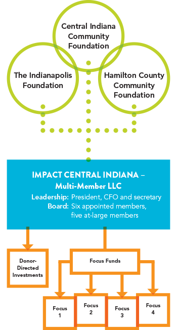 structure of IMPACT Central Indiana